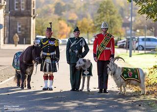 Mascots on parade