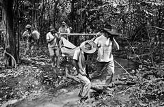 www.imagenshumanas.com.br (joao ripper) Tags: chichalkrin amazonia assassinato morte rede solidariedade terra tocantins trabalhador trabalhadorrural tristeza violencia