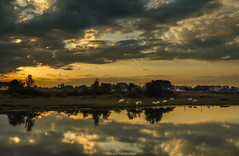 Sunrise on the Saone (mahesh.kondwilkar) Tags: bourgogne bourgognefranchecomté burgundy saone saôneetloire sunrise verjux france fr