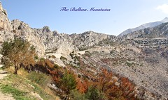 """THE WAY TO DUBROVNIK by THE """"BALKAN"""" MOUNTAINS in CROATIA (Guy Lafortune) Tags: paysage landscape trees arbres road route rocky mountains rocheuses pierre roche plants plantes gazon grass high sky ciel croatie croatia europe autumn automne europa balkan"""