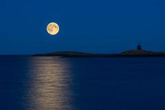 Moonlight at Homborsund (hartvig.johnsen) Tags: norway grimstad moonlight sea shoreline night longtimeexposure blåtimen olympus omd