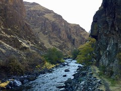 Imnaha to Hells Canyon Overnighter (Doug Goodenough) Tags: bicycle cycle bike surly ecr bikepacking packing oregon imnaha canyon canyons vista fall foliage leaves color snake river 29 plus pedals spokes october 2017 17 drg53117 drg53117p drg53117pfallimnaha bikepackingcom drg531