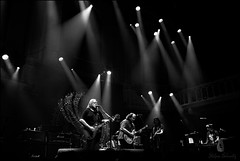 Muloween_SAS_7612 (SAS Photographie) Tags: governmentmule govt mule amsterdam paradiso rock concert bw sw stage bühne light stagelight limelight