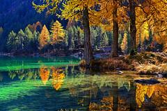 A piece of heaven (ej - light spectrum) Tags: lake bergsee see alpes alpen switzerland schweiz nature natur autumn herbst reflection spiegelung fujifilm xt2 herbstfarben lerchen larks sunlight sonnenlicht wald forest
