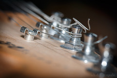 Macro Mondays - Member's Choice - Musical Instruments (benno.dierauer) Tags: memberschoicemusicalinstruments macrounlimited macro macromondays musikinstrument canon70d tabletop
