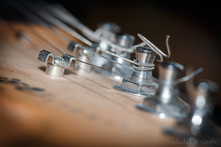 Macro Mondays - Member's Choice - Musical Instruments