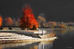 Fantasia d'autunno (lefotodiannae) Tags: rotonda colori fantasia riflessi porlezza autunno lefotodiannae entissimo viraggio