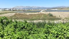 Northern Morocco Landscape (Tanger-Tétouan-Al Hoceïma Region, Morocco) (courthouselover) Tags: morocco maroc المَغرِب almaghrib kingdomofmorocco المملكةالمغربية ⵜⴰⴳⵍⴷⵉⵜⵏⵍⵎⵖⵔⵉⴱ tangertetouanalhoceimaregion régiondutangertétouanalhoceïma landscapes africa