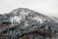 First Snow EXPLORED 10/9/17 (Beth Madigan) Tags: mtbakersnoqualmienationalforest nationalforest northcascades snow fall atumn mountains washington nationalpark np ncnp maplepassloop maplepass hike hiking outside outdoors