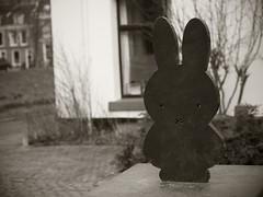 Miffy in Utrecht (Long Sleeper) Tags: street statue nijntje miffy ミッフィー うさこちゃん cute sepia monochrome miffysquare nijntjepleintje utrecht holland thenetherlands lumixg425mmf17asph dmcgx1