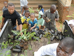 """Community tree planting • <a style=""""font-size:0.8em;"""" href=""""http://www.flickr.com/photos/152934089@N02/36943577943/"""" target=""""_blank"""">View on Flickr</a>"""