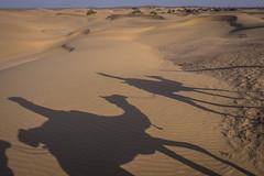 Rajasthan - Jaisalmer - Desert Safari with Camels-75