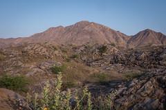 Rajasthan - Pushkar - Outskirts
