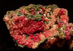 red wulfenite (JoelDeluxe) Tags: arizonasonora desert museum tucson az joeldeluxe cacti heat plants wildlife zoo botanical garden minerals displays gardens birds mineral wulfenite red