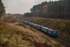 ET22-1020 (arkadiusz1984) Tags: et22 d29131 magistralawęglowa freighttrain