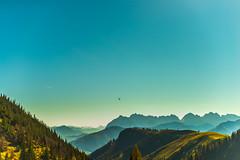 Pendling (Vladi Stoimenov) Tags: austriaösterreich landscape pendling countryside excursion tour d610 nikkor nikon 500mmf14 nikonlens helicopter wildekaiser tree forest