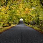 The back road to Buchlyvie thumbnail