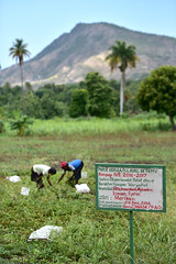 NP_Haiti14