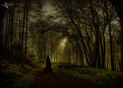 The Dark Forest. (Mr Bultitude) Tags: forest dark glenariff woman hood cloak cloaked mystic mystical sunset ray forestside surreal path trail track northernireland ireland irish celtic photoshop digital art fine trees