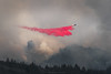 Sonoma County Firestorm (Bob Bowman Photography) Tags: airtanker fire forest airplane calfire firefighter sonomacounty california hoodmountaun wildfire sonomastrong