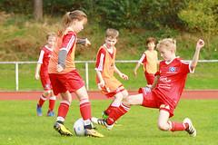 Feriencamp Geesthacht 17.10.17 - c (17) (HSV-Fußballschule) Tags: hsv fussballschule feriencamp geesthacht vom 1610 bis 20102017
