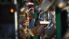 Uni Love Locks (Theen ...) Tags: adelaide colourful declarations engraved footbridge green locks lumix metal pedestrian red rivertorrens rusty theen trafficlights universityofadelaide unversity victoriadrive