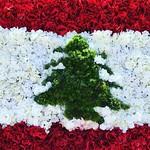 Houston Lebanese festival thumbnail