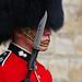 Sharp (WHO 2003) Tags: london toweroflondon bayonet busby