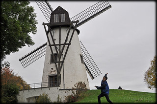 dancing with windmills
