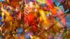 Farben / colors (H. Roebke) Tags: autumn de canon5dmkiv foliage herbst nature germany laub multipleexposure blätter natur leaves 2017 niedersachsen farbe canon100400mmf4556lisiiusm mehrfachbelichtung lightroom color eressanten und meinetwegen auch