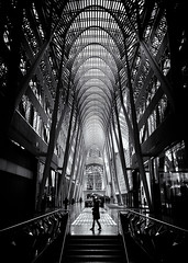Allen Lambert Galleria Toronto Canada No 2 (thelearningcurvedotca) Tags: allenlambertgalleria briancarson canada canadian ontario thelearningcurvephotography toronto abstract arch architecture atrium background blackandwhite bnw building city columns concept construction design downtown environment famous geometric glass indoors interior landmark light lines monochrome pattern perspective shape steel street structure texture urban wall window absolutearchitecture bwartaward bwmaniacv2 bej blackwhitephotos blackandwhiteonly blogtophoto bwemotions cans2s discoveryphotos iamcanadian linescurves noiretblanc torontoist true2bw yourphototips