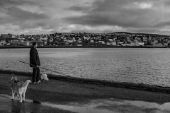 DSC02707 (Guðmundur Róbert) Tags: hafnarfjörður street photography sony a7ii mitakon 50mm f095 f14 f12 black white landscape autumn haust ísland iceland icelandic ljósmyndun hfj götu a7 walking walk sun sky water
