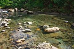 YGH Iwanastream DSC_4051 (touhenboku) Tags: iwana fly fishing flyfishing stream river creek brodin lamson waterworks