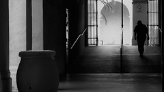 From Darkness To Light (Rand Luv'n Life) Tags: odc our daily challenge poetry of human architecture urn columns arch steps bars silhouette man indoor outdoor monochrome blackandwhite natural lighting balboa park san diego california