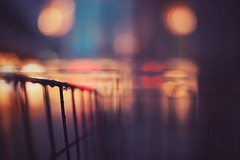 bike basket (christian mu) Tags: bikebasket bike fahrrad fahrradkorb depthoffield dof bokeh distagon distagon3514 sony 35mm 3514 christianmu sonya7ii zeiss germany münster muenster fahrradstadt fahrradhauptstadt night rain raining