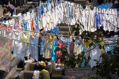 Mahalaxmi Dhobi Ghat | Mumbai | Maharashtra (chamorojas) Tags: bombay india laundry mahalaxmidhobighat maharashtra mumbai