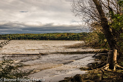 20171016_HUDSON VALLEY Ruth Reynolds Glunt Nature Preserve SAUGERTIES LIGHTHOUSE _BFF_3966-2 (Bonnie Forman-Franco) Tags: landscape waterscapes saugerties ruthreynoldsgluntnaturepreserve waterscape ruth reynolds autumnalchanges