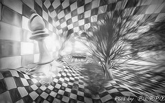 Chess  Wonderland (2) (Poppys_Second_Life) Tags: 2l chess chesswonderland picsbyⓟⓞⓟⓟⓨ popi popisadventuresin2l popikone popikonesadventuresin2l poppy sl secondlife virtualphotography chequered bw blackandwhite