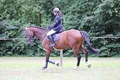 _MG_5816 (dreiwn) Tags: ridingarena reitturnier reiten reitplatz reitverein reitsport ridingclub equestrian showjumping springreiten horse horseback horseriding horseshow pferdesport pferd pony pferde tamronsp70200f28divcusd