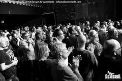 2017 Bosuil-Het publiek bij Ian Siegal 8-ZW
