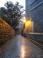 Early Morning Rain (Ian Robin Jackson) Tags: rain aberdeen alley sony zeiss light reflections tree church cobbles morning october