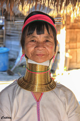 Kayan oldest woman - Thailand (cattan2011) Tags: thailand ethics culture tribe kayan traveltuesday travelbloggers travelphotography travel streetphoto streetpicture streetphotography streetart portrait landscapeportrait 泰国 people woman