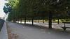 Paris - Les Tuileries (corno.fulgur75) Tags: paris parís parigi parijs paryż paříž iledefrance france francia frança frankrijk frankreich frankrig frankrike francja francie saintgermainlauxerrois tuileries jardindestuileries 1erarrondissement june2017