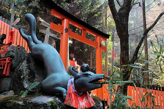 Fushimi Inari | Water Fox