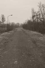 _MG_8084 (daniel.p.dezso) Tags: kiskunlacháza kiskunlacházi elhagyatott orosz szoviet laktanya abandoned russian soviet barrack urbex ruin