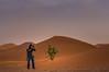 (C.Kaiser) Tags: desert dunes ergchegaga marokko sahara wüste drâatafilalt