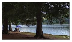 La discussion (Ylliab Photo) Tags: ylliabphoto ylliab artiste auvergne canon lepaysagesimplement landscape lac lake tranquilité