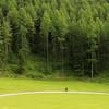 almost minimal (Monica Muzzioli) Tags: green trees cyclist forest grassland minimal verde foresta prato ciclista erba alberi people