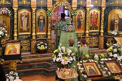Преподобного Сергия (7)