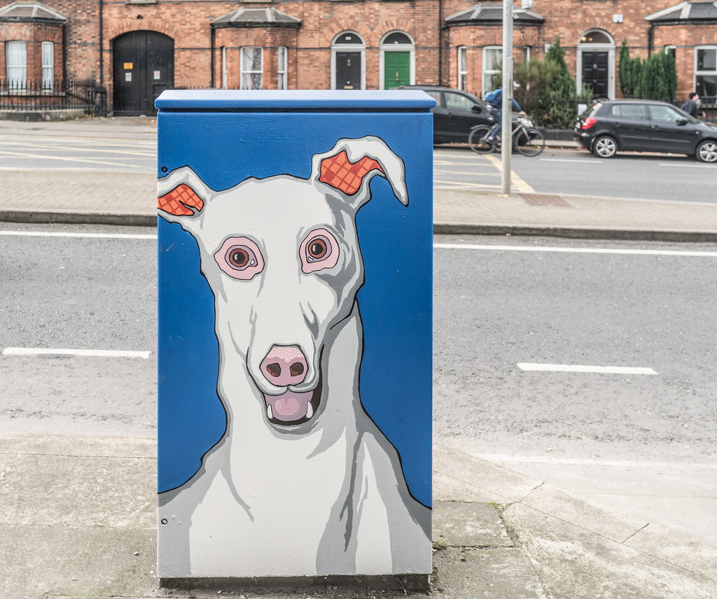GREYHOUND AT HAROLDS CROSS [DUBLIN CANVAS PAINT-A-BOX PROGRAMME]-133255